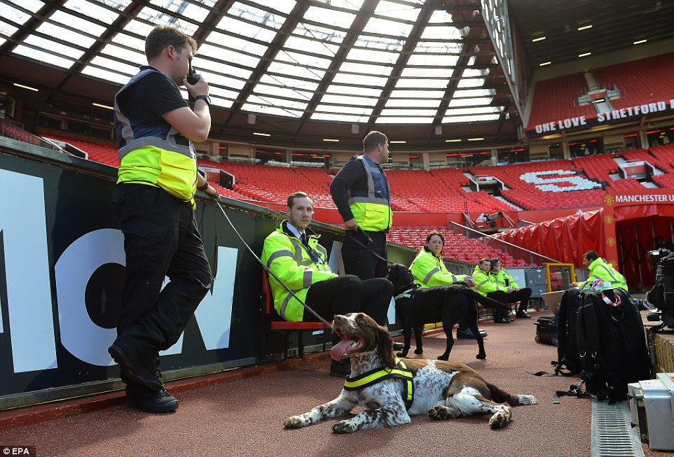 A sniffer dog takes a rest from searching the stands at Old Trafford following a 'Code Red' security alert prompted by a suspect package