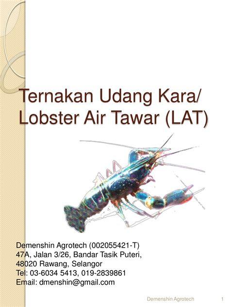 jualan terhad resepi terbaru kuih bulan anak lobster