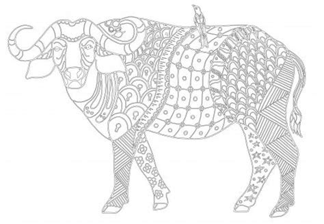 images  advanced animal coloring pages