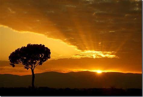gambar matahari terbit  indah gambar gambar lucu