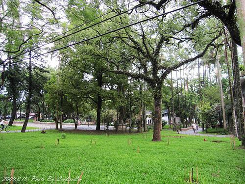 大溪中正公園|大溪纜樁