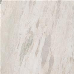 Where To Buy Marble Tile Bianco Leopard 18 X 18 Chi Colosimo
