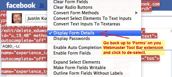 Deselect Display Form Details in Webmaster Toolbar