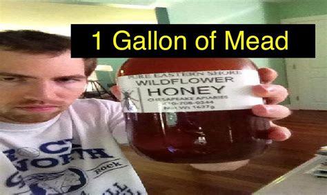 easy  gallon mead youtube