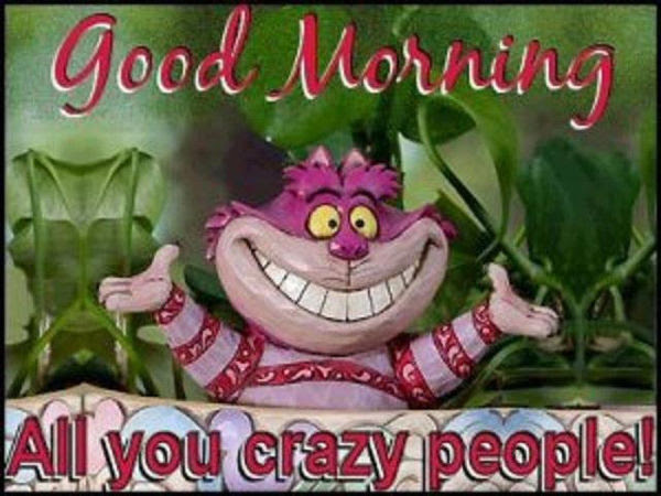 Good Morning All You Crazy People Pictures Photos And Images For