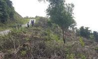 Kiên Giang: Hàng tỷ đồng bảo vệ rừng vào túi ai?