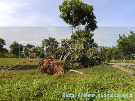 photo 07 Hurricane Invasion In Malacca_zpsxi69ne2c.jpg