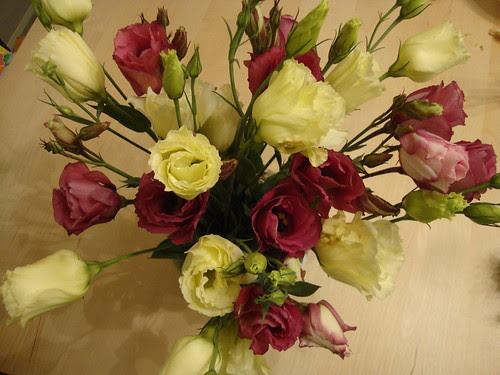 Princeton farmer's market flowers this week