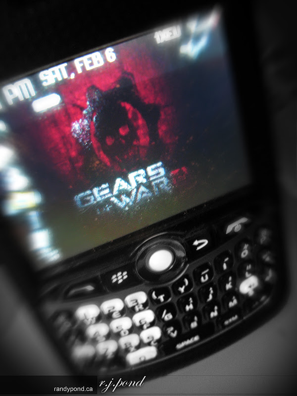 ~ 37/365 Blackberry ~