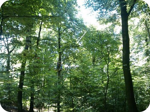#Ausflugtipp #Wuppertal und Umgebung :Spass im Wald auf nach Velbert-Langenberg zum Sender