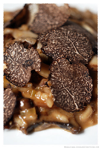 Truffle Risotto© by Haalo