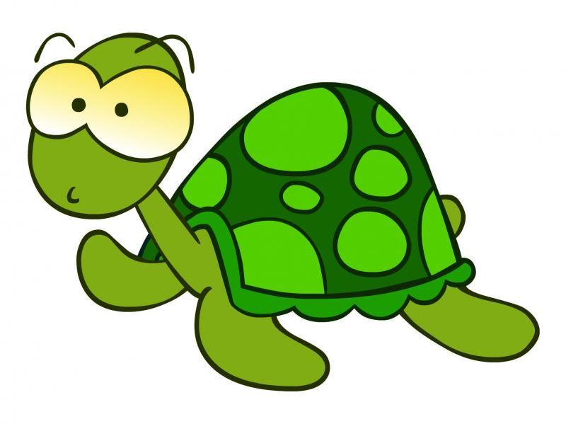 tortuga.5181302 std La técnica de la tortuga para el control de la hiperactividad tecnica de la tortuga problemas educativos padres educacion hiperactividad Escuela de padres ayuda padres ayuda con los hijos