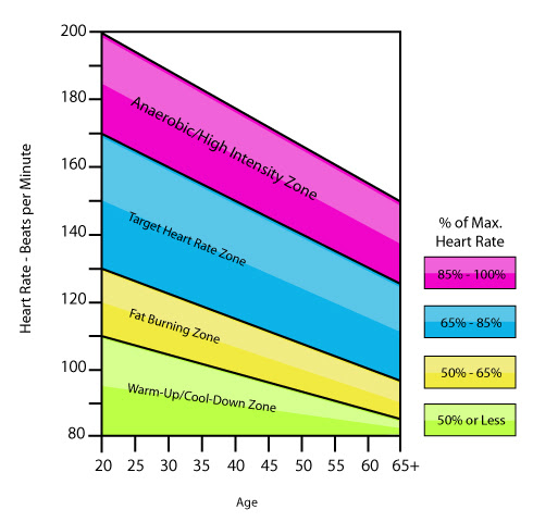Target Heart Rate Zone By Age