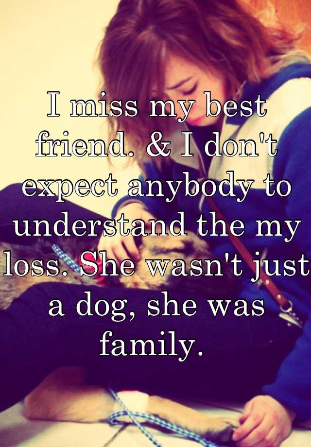 I Miss My Best Friend I Dont Expect Anybody To Understand The My