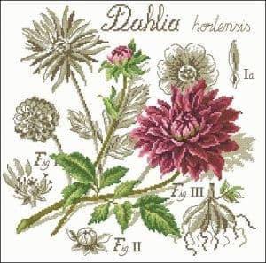 cross-stitch designs flowers
