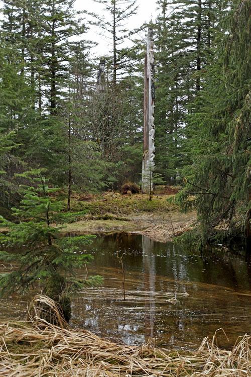 totems near Son-i-Hat Creek, Kasaan, Alaska