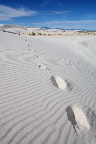 IMG_0221 Footprints