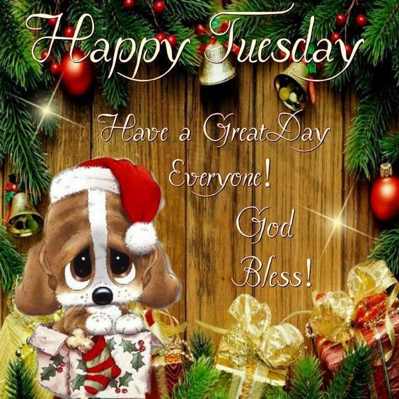 Puppy Christmas Decor Happy Tuesday Quote Pictures Photos And