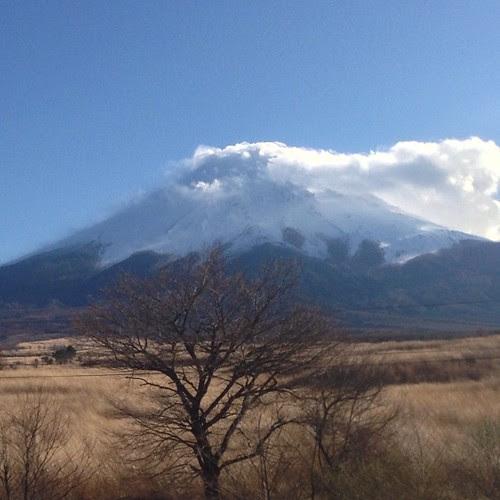 東富士五湖道路から見る富士山が好き。