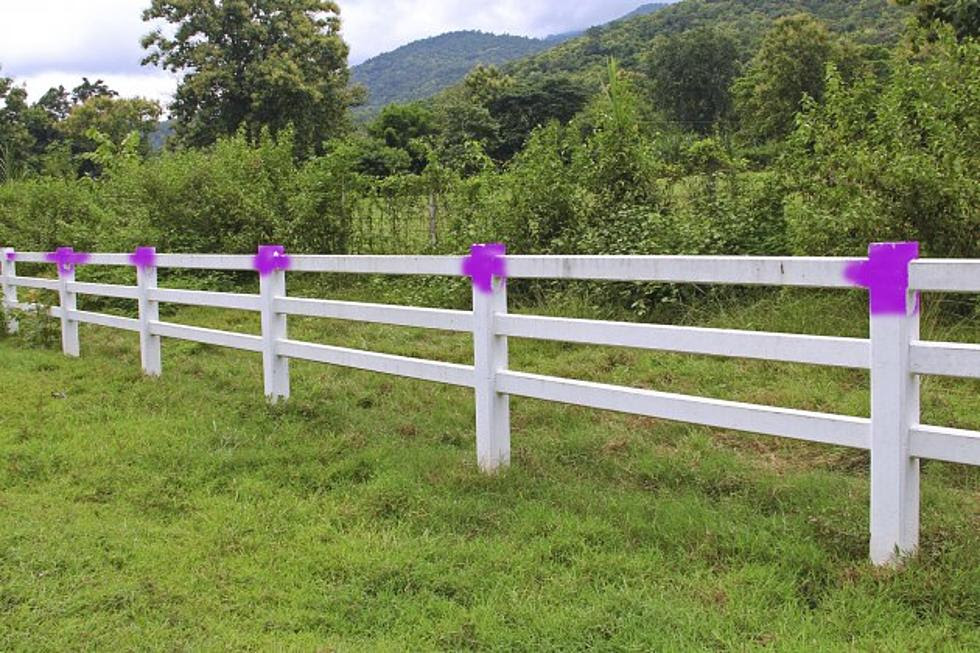Do You Know What Purple Paint On A Fence Post Means In Missouri