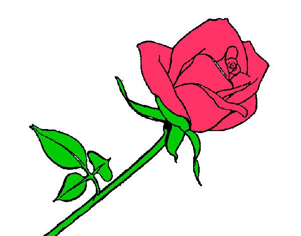 Dibujo De Rosa Pintado Por Nickcris En Dibujosnet El Día 04 03 13 A