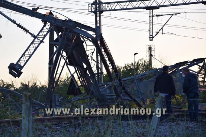 alexandriamou_treno_adentro2029