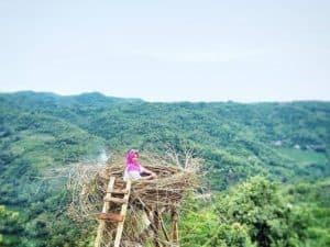 Lokasi dan Rute Menuju Bukit Mojo Gumelem Dlingo