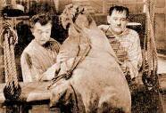 Laurel & Hardy - Ghost overboard