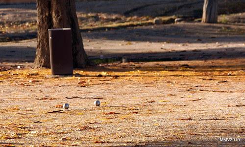en aranjuez  17-11-2010 17-58-38