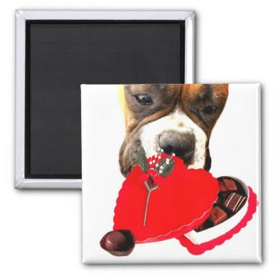 Valentines Day Boxers - Mens Underwear Valentine's Day Boxer with Chocolates