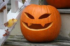 pumpkin 079