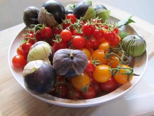 Beautiful Tomatoes & Tomatillos
