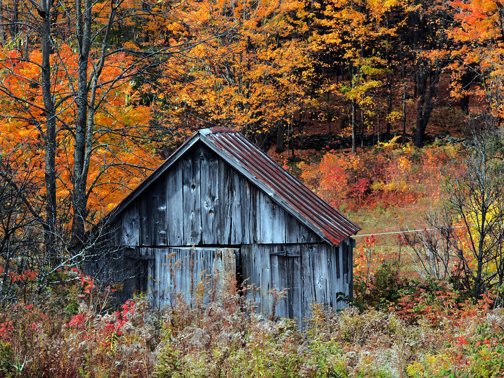 Vermont autumn shack