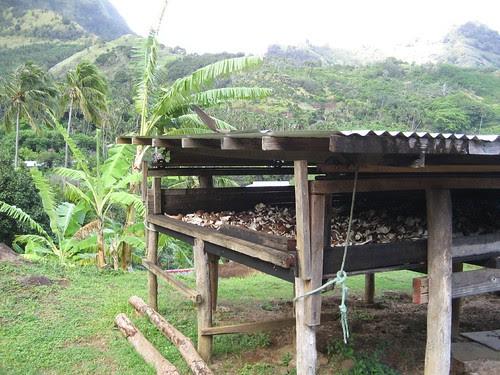 Copra drying, Vaitahu