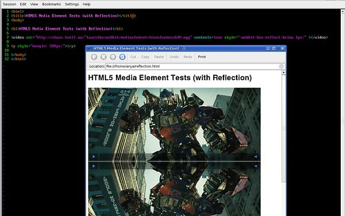 HTML5's Media element with reflection