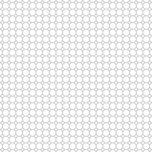20-cool_grey_light_NEUTRAL_medium_octagon_outline_12_and_a_half_inch_SQ_350dpi_melstampz