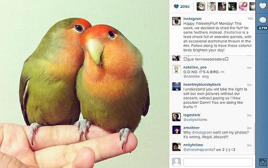 Site do aplicativo Instagram, que anunciou segunda-feira (17) nova política de uso