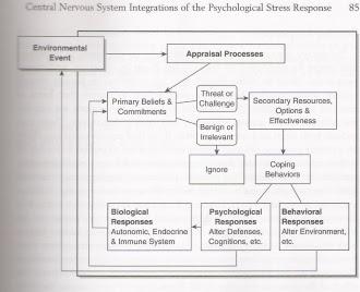 Appraisal Model of Stress - Stress, Coping, & Immune ...
