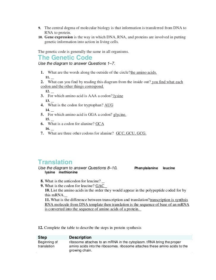 Chapter 13 packet