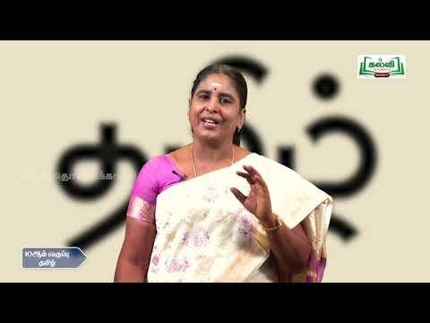10th Tamil கல்வி மொழிப் பெயர்ப்புக் கல்வி Kalvi TV