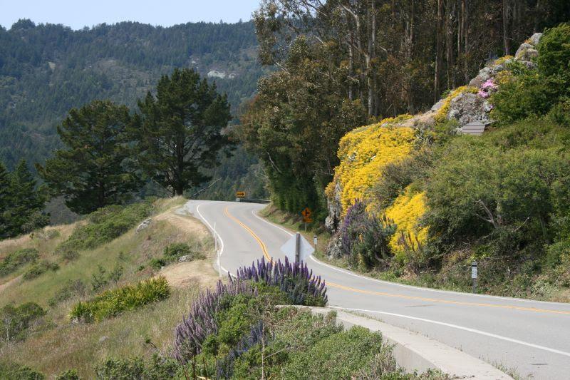 Road to Mt. Tamalpais