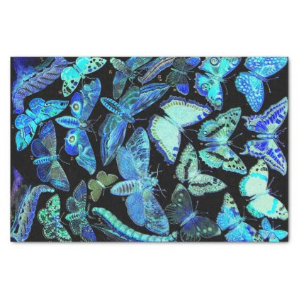 Spooky Black Blue Butterfly and Moth Tissue Paper