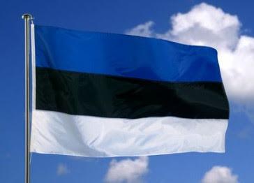 Pildiotsingu eesti lipp tulemus