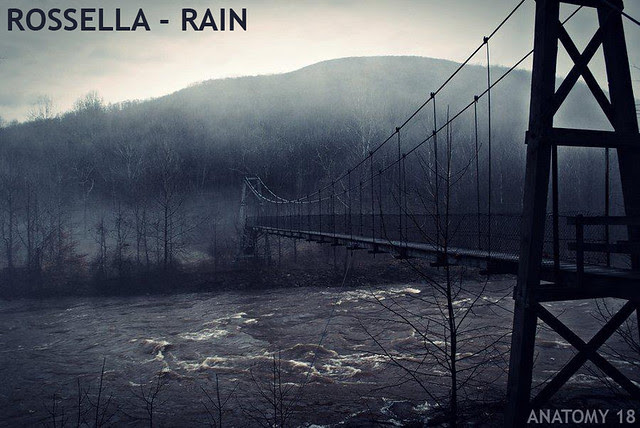 rossella - rain - anatomy 18
