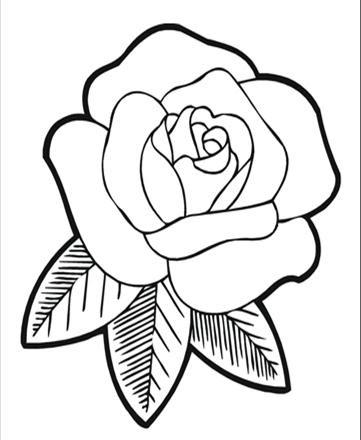 Disegni Di Rose Da Colorare Stampae Colorare