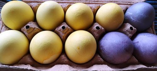 Eier mit Kurkuma und Holundersaft gefärbt