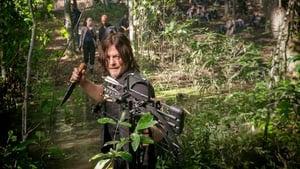 The Walking Dead Season 8 : Dead or Alive Or
