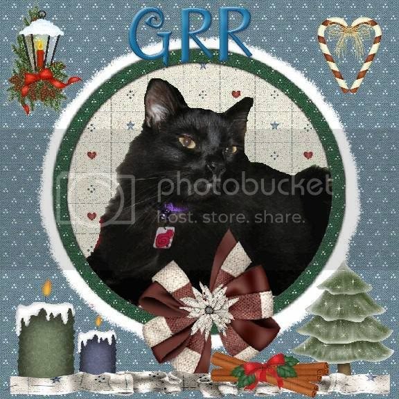 House Panther,Grr,Christmas