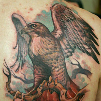 Hawk Tattoo Meanings Itattoodesignscom