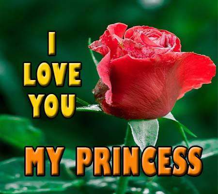 Rosas De Amor En Ingles Rosas De Amor